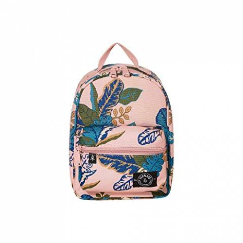 PARKLAND ランチ バッグ レディース 【 The Rodeo Lunch Kit 】 Jungle Blush