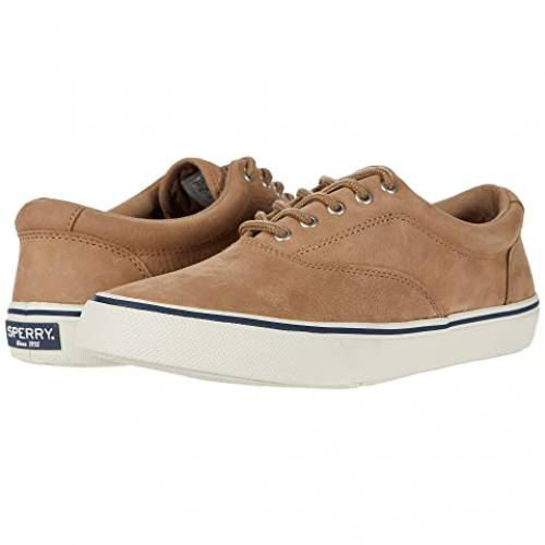 SPERRY スニーカー メンズ 【 Striper Ii Cvo Washable 】 Tan 1