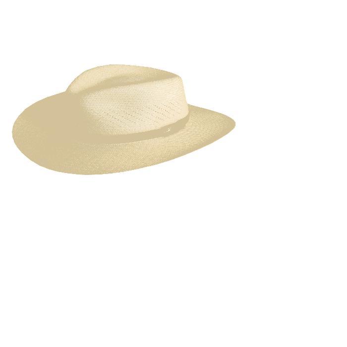 【海外限定】サファリ バッグ メンズ帽子 【 SAFARI PANAMA STRAW FEDORA 】