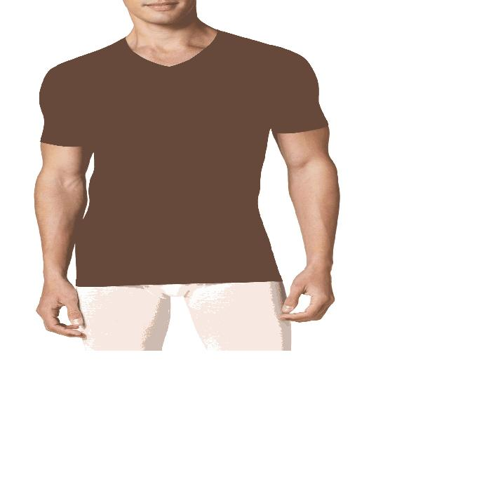 【海外限定】クール ハイ ブイネック メンズファッション カジュアルシャツ 【 COOL COTTON HIGH VNECK UNDERSHIRT 】【送料無料】