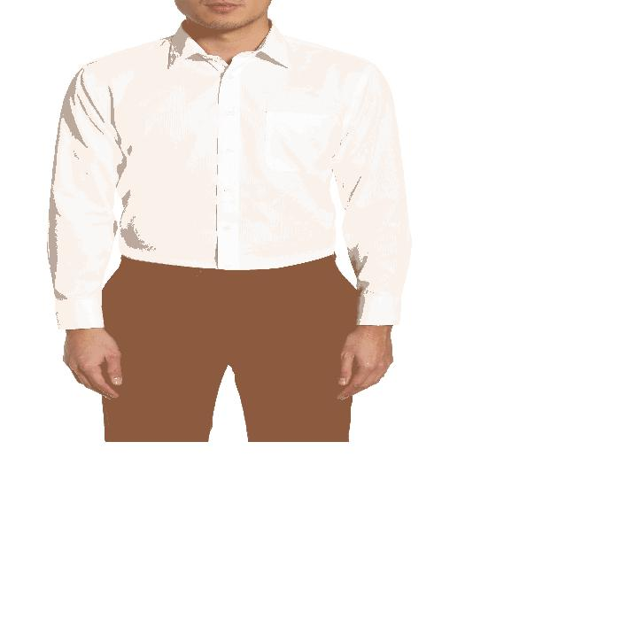 【海外限定】ドレス SMARTCARE・・< SUP> トップス メンズファッション 【 TRIM FIT DRESS SHIRT 】