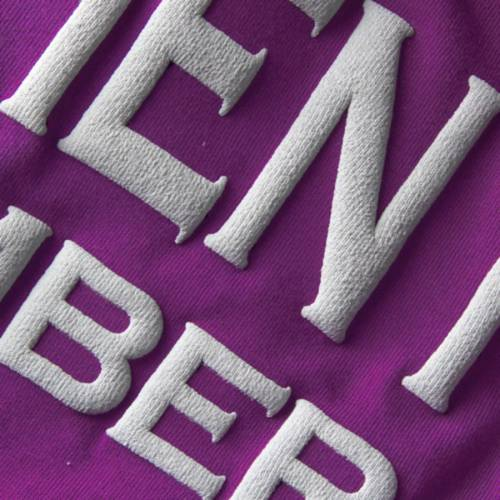 SPIRIT JERSEY ステファン レディース Tシャツ 紫 パープル レディースファッション トップス カットソー 【 Stephen F Austin Lumberjacks Womens Oversized T-shirt - Purple 】 Purple
