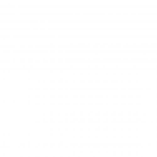 ナイキ ゴルフ ニット プリント スコート 銀色 シルバー 2.0 レディース 女性用 レディースファッション ボトムス スカート 【 NIKE GOLF PRECISION KNIT PRINT SKORT WHITE BLACK METALLIC SILVER 】