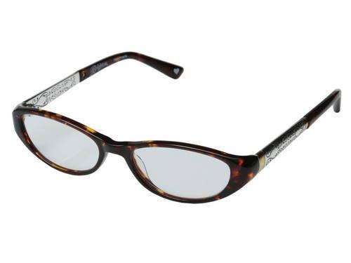 メンズ 男性用 サングラス 眼鏡 【 BRIGHTON VENEZIA READERS TORTOISE 】