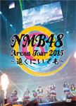 【送料無料】[枚数限定]NMB48 Arena Tour 2015 ~遠くにいても~/NMB48[DVD]【返品種別A】