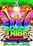 【送料無料】EXILE TRIBE LIVE TOUR 2012 TOWER OF WISH(2枚組)/EXILE[DVD]【返品種別A】