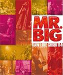 【送料無料】ロウ・ライク・スシ 114 デラックス・エディション/MR.BIG[Blu-ray]【返品種別A】