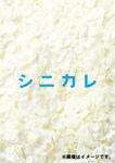 【送料無料】シニカレ完全版 ブルーレイBOX/藤ヶ谷太輔[Blu-ray]【返品種別A】