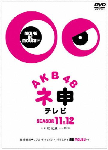 【送料無料】AKB48 ネ申テレビ シーズン11&シーズン12/AKB48[DVD]【返品種別A】