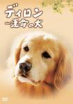 【送料無料】ディロン 運命の犬/樋口可南子[DVD]【返品種別A】