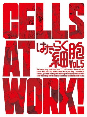 【送料無料】[限定版]はたらく細胞 5(完全生産限定版)/アニメーション[Blu-ray]【返品種別A】