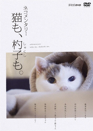 【送料無料】ネコメンタリー 猫も、杓子も。/ドキュメント[DVD]【返品種別A】