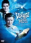 【送料無料】原潜シービュー号~海底科学作戦 DVD COLLECTOR'S BOX Vol.2/リチャード・ベースハート[DVD]【返品種別A BOX DVD】, 今帰仁村:099a3f75 --- officewill.xsrv.jp