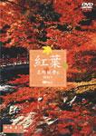 紅葉 名所絶景を訪ねて 映像遺産・ジャパントリビュート/BGV[DVD]【返品種別A】