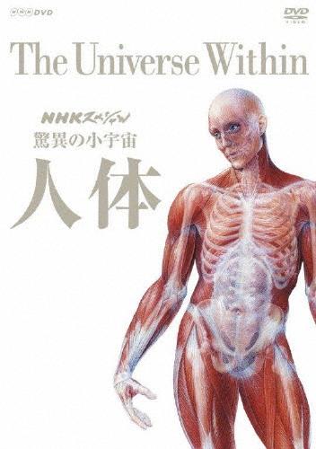 【送料無料】NHKスペシャル 驚異の小宇宙 人体 DVD BOX(新価格)/教養[DVD]【返品種別A】