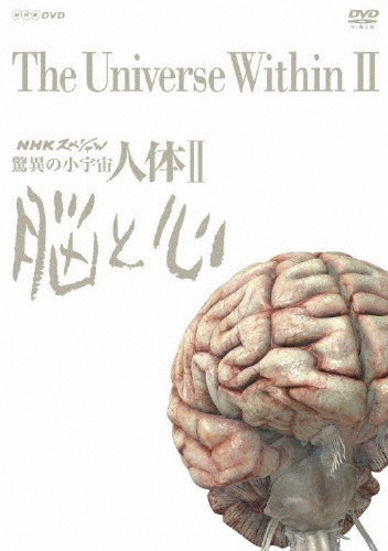 【未使用品】 【送料無料】NHKスペシャル DVD 脳と心 驚異の小宇宙 人体II 脳と心 DVD BOX(新価格)/教養[DVD]【返品種別A】, サンブマチ:ade2914f --- canoncity.azurewebsites.net