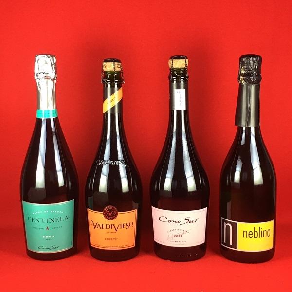 北海道、沖縄、離島は別途送料が発生します ワインセット 送料無料 人気のチリワイン スパークリングワイン 飲み比べ 4本セット