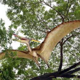 巨大プテラノドン / Giant Pteranodon