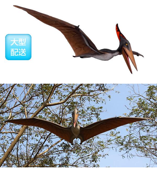 プテラノドン3m / Pteranodon 10ft.