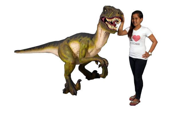 ドロマエオサウルス / Dromaeosaurus