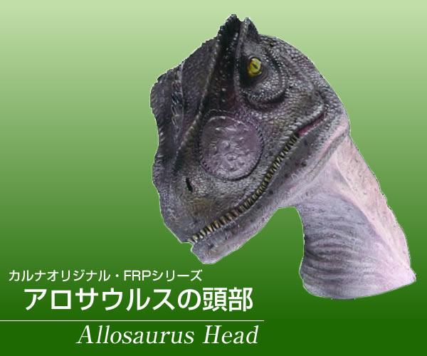 アロサウルスの頭部 / Allosaurus Head