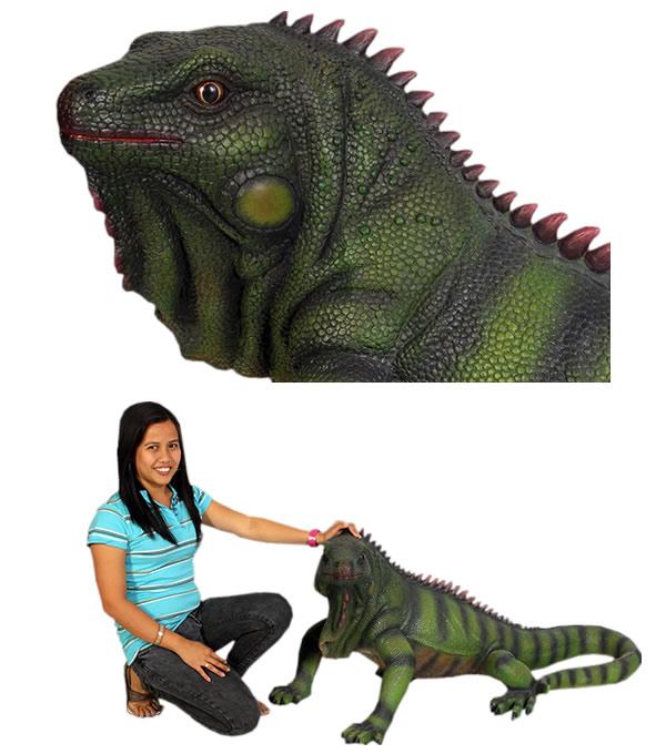 イグアナ(大) / Iguana