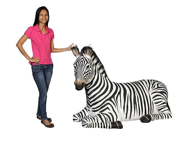 シマウマの休息 / Zebra-Resting