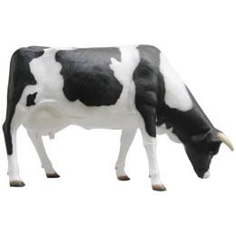 お母さん乳牛 / Cow Grazing