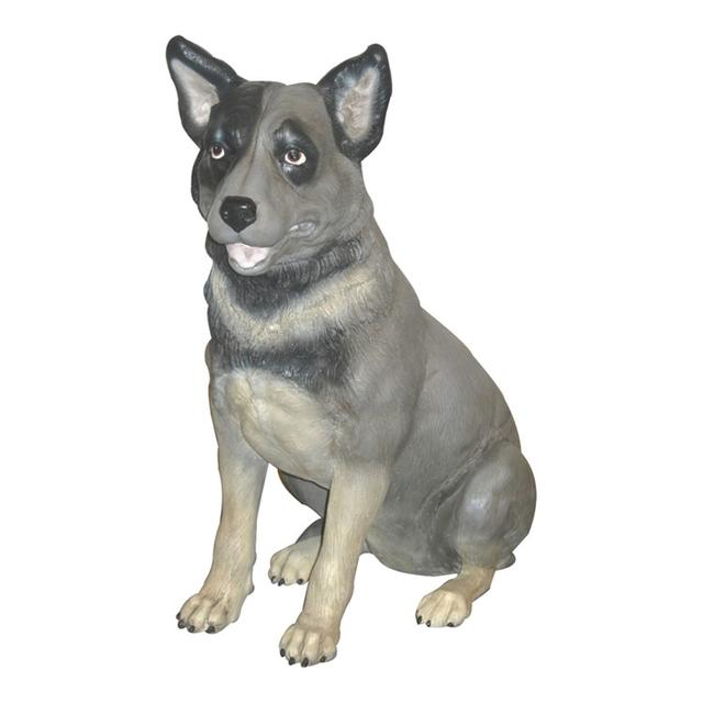 私におまかせ犬 / Blue Heeler
