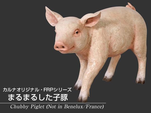 置物動物インテリア豚ブタ動物オブジェ まるまるした子豚 / Chubby Piglet (Not in Benelux/France)【あす楽対応】