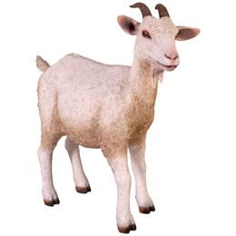 置物動物インテリア動物ヤギ動物オブジェ 子やぎの挑戦 / Goat