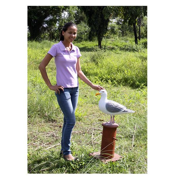 動物オブジェ ビットの上のカモメ / Seagull on Mooring Bollard
