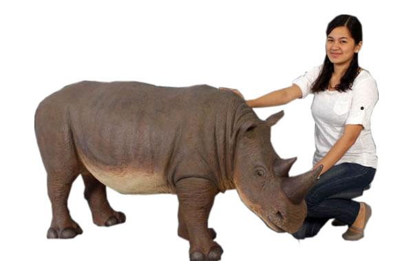 小型のサイ / Rhinoceros Small