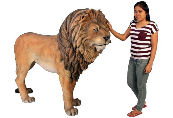 雄ライオン / Lion King