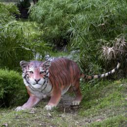 特売 挑むベンガルタイガー// Bengal Bengal Tiger, applegreeN:90b83901 --- irecyclecampaign.org