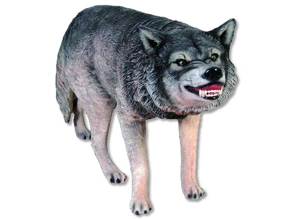 オオカミ / Wolf 狼