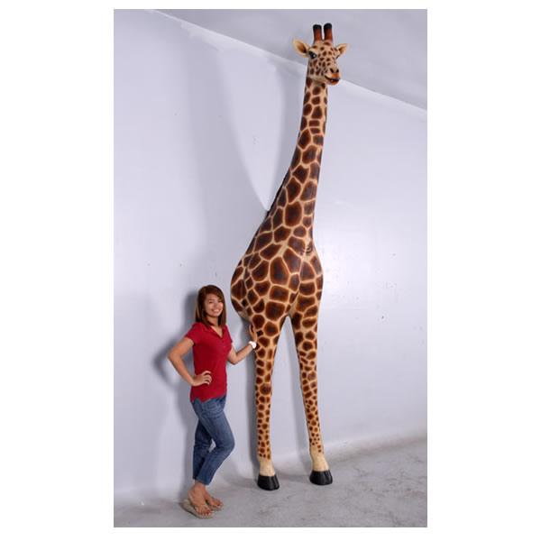 親キリンの脱出// Giraffe Giraffe 12ft.-Breaking Out Out, ホバラマチ:77d3c7ee --- economiadigital.org.br