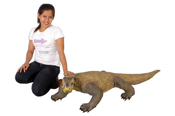 置物置物動物インテリアオオトカゲコモドドラゴン / Komodo Dragon 5 1/2ft. (Not in USA/Aus)