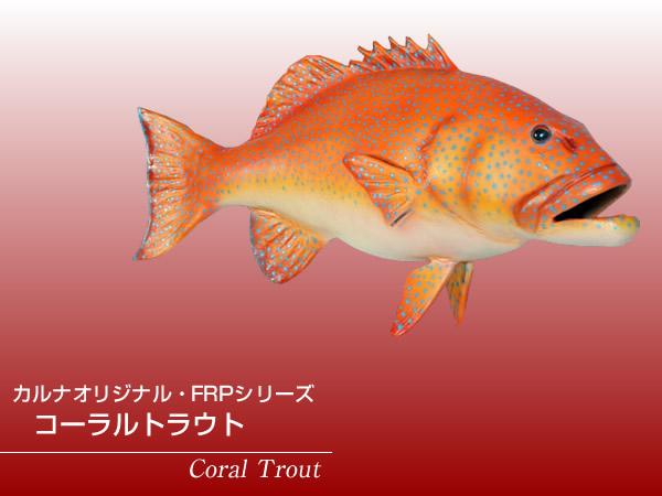 魚置物インテリア サカナさかなオブジェ コーラルトラウト / Coral Trout