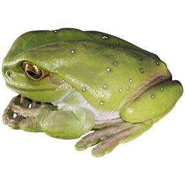 置物インテリア 動物大きいカエル動物オブジェ でかいカエル / Frog Jumbo