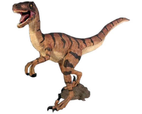 ヴェロキラプトル / Velociraptor