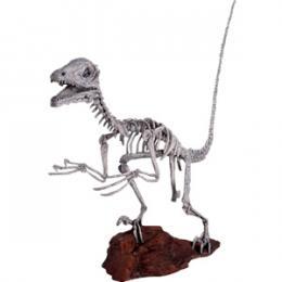 ディノニクス・スケルトン / Deinonichus Skeleton