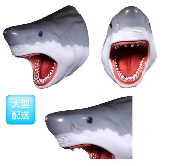 さかなオブジェ ジョーズの頭 / Great White Shark's Head
