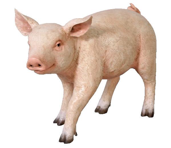 置物動物インテリア豚ブタ動物オブジェ まるまるした子豚 / Chubby Piglet (Not in Benelux/France)