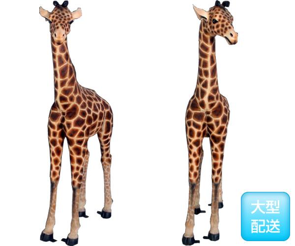 置物動物インテリア麒麟キリンの赤ちゃん / Baby Giraffe 6ft.(Not in Aus)