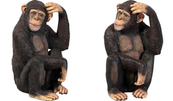 置物動物インテリア(猿チンパンジー)動物オブジェ チンパンジー / Chimpanzee