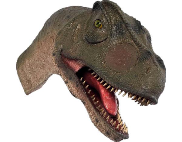 置物インテリア 恐竜口を開けるアロサウルスの頭部 / Allosaurus Head-Mouth Open