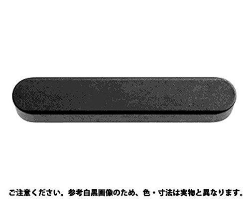 サンコーインダストリー 両丸キー 南海工業製  規格(6X6X16) 入数(100)【smtb-s】