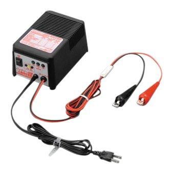 デイトナ バッテリー充電器 P2020EV3 回復&維持充電器 -65928【smtb-s】