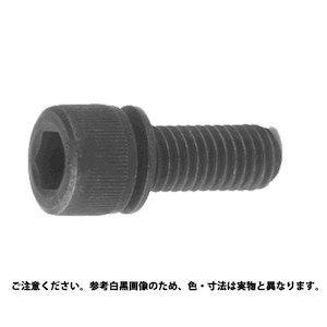 サンコーインダストリー NHセフティソケット クロメ-ト 6 X 10 A000900N02#【smtb-s】